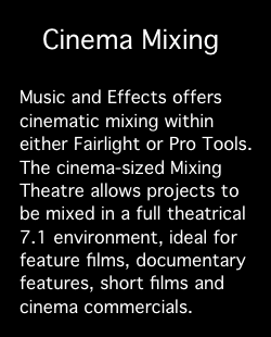 Services: Cinema Mixing